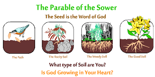 the parable of sower. Fine Parable Righteous Gentiles And The Parable Of Sower Intended The Of A