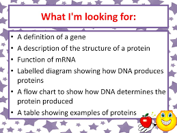 National 5 Cell Biology Producing Proteins National 5 Cell