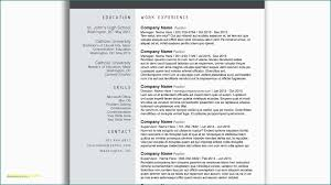 Creative Resume Templates Free Download For Microsoft Word Sample