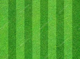 grass field background. Real Green Grass Field Background \u2014 Stock Photo N