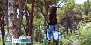 outdoor activities for adults. 25% Off Full Day Of Outdoor Activities For Kids \u0026 Adults From Sharewood Camp,