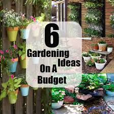 Small Picture Awesome Gardening Ideas On A Budget Gardening Pinterest