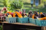 farmers market vendor business plan