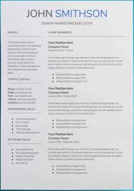 Modern Resume Template Google Docs Template Microsoft Professional Resume Templates Google