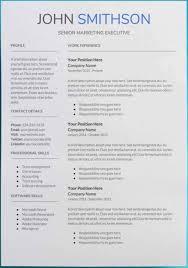 Google Cv Example Template Microsoft Professional Resume Templates Google