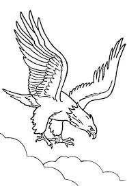 American Bald Eagle Coloring Pages Beautiful Bald Eagle Coloring