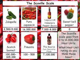 77 Explicit Chili Heat Scale