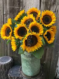 we are innovators and have created an entirely new concept in sunflowers why not use sunflowers as fillers in any kind flower arrangement