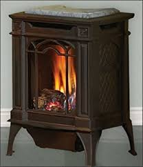 Amazon.com: Napoleon GVFS20N Fireplace, Arlington Natural Gas ...