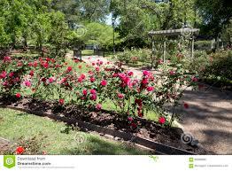 nice rose park design in tyler tx usa