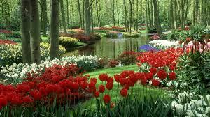 hd wallpaper nature spring. Interesting Spring Spring Desktop Background To Hd Wallpaper Nature