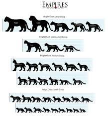Cat Height Chart Cat Height Chart U S A By Ebc Admins Small Wild Cats