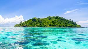 An island or isle is any piece of subcontinental land that is surrounded by water. Green Island Cairns Tickets Eintrittskarten Getyourguide
