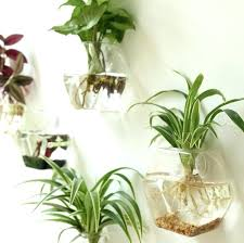 wall hanging planter 2 mounted glass vase plant flower pot small plants pots hung han