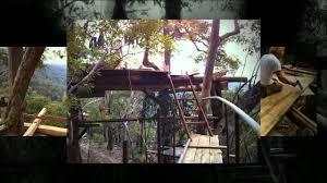 Treehouse Accommodation Nsw