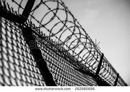 barbed wire fence prison. Prison Fence In Black And White. Barbed Wire Closeup. W
