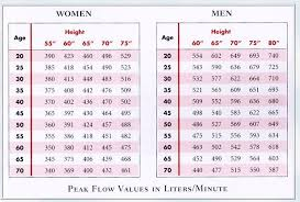 Asthmamd Peak Flow Meter Chart Peak Flow Chart Excel Bedowntowndaytona Com