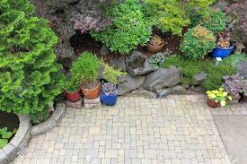 patio plants ideas uk partial shade for shaded areas patio plants