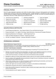 resume describe yourself