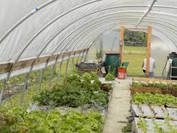 green house plans. High Tunnel Greenhouse Green House Plans