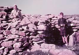 Scottish Islands Explorer: Seal Commitment
