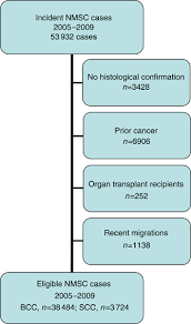 Skin Cancer Chart Flow Chart Of Inclusion Of Cases Of Nonmelanoma Skin Cancer