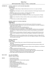 ... Budget Assistant Resume Sample as Image file
