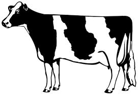 cow silhouette clip art. Wonderful Cow Throughout Cow Silhouette Clip Art