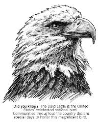 Bald Eagle Coloring Page Coloring Pages