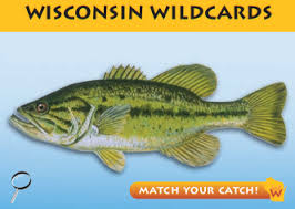 What Fish Is That Types Of Game Fish In Wisconsin Part 2