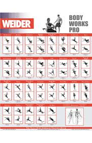 Total Gym Wall Chart Download 7 Total Gym Exercise Chart Inspirational Total Gym Workout