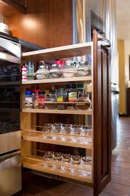 Kitchen Spice Rack Kitchen Cabinet Pull Out Spice Rack Cabinet Gallery
