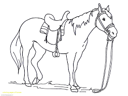 Printable Horse Coloring Pages Collection Free Coloring Books