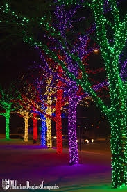 collection office christmas decorations pictures patiofurn home. Column Of Colorful Trees Lit With Bright LED Lights At O\u0027Hare Airport In Chicago Collection Office Christmas Decorations Pictures Patiofurn Home E