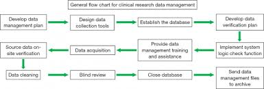 Clinical Data Management Flow Chart Management Plans Clinical Data Plan Definition Ial Ppt Trial