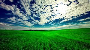 Download wallpaper 3840x2160 field sky grass clouds green