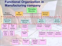 Lecture 2 Project Organizational Structure And Culture Ppt