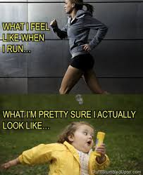Fitness Memes for Every Situation | BodyRock via Relatably.com