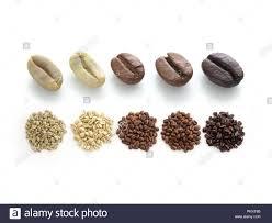 Light Vs Dark Roast Raw Light Medium And Dark Roast Coffee Beans Stock Photo