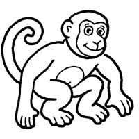 Small Picture Apes Monkeys Coloring Pages Surfnetkids