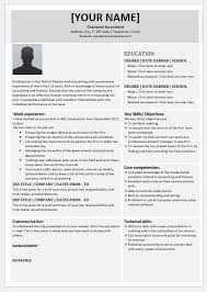 Accounting Firm Resumes Chartered Accountant Resume Templates For Ms Word Word