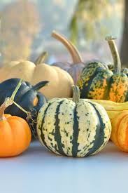 Gourd Identification Chart A Visual Guide To Winter Squash Varieties Epicurious