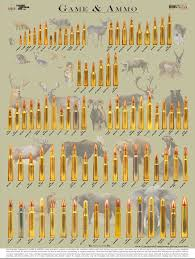 Gun Caliber Chart Wall Poster Illustrates Hunting Cartridges And Game Species