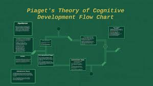 Flow Chart Theory Piaget 039 S Theory Of Cognitive Development Flow Chart By