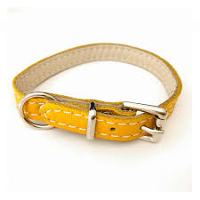 luxury leather puppy collar yellow