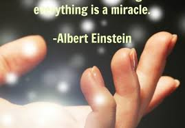 Miracle Quotes Interesting Everything Is A Miracle Quote ALS News Today
