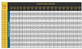 Pressure Washer Tip Size Chart Pressure Washer Psi Ratings Kepomp3 Info
