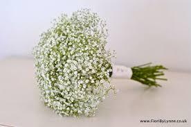 re gypsophila as flowers