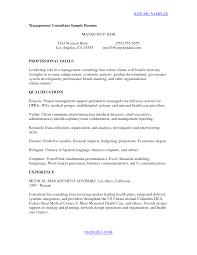 Cover Letter Information Security Consultant Lv Crelegant Com
