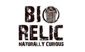portfolio picture client bio relic